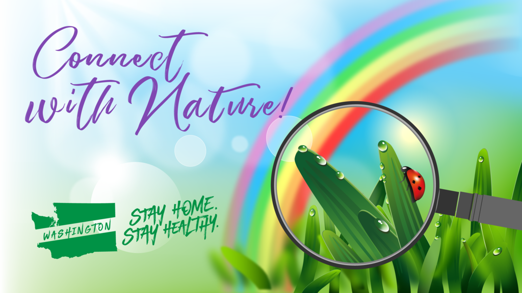 Stay Home, Stay Healthy - Connect with Nature