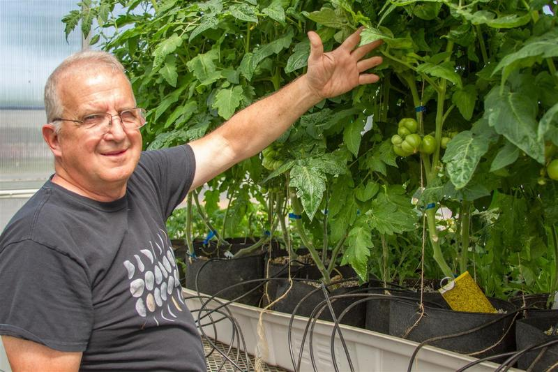 Joe Bosch proudly shows off the hydroponic tomatoes this year's class successfully grew.